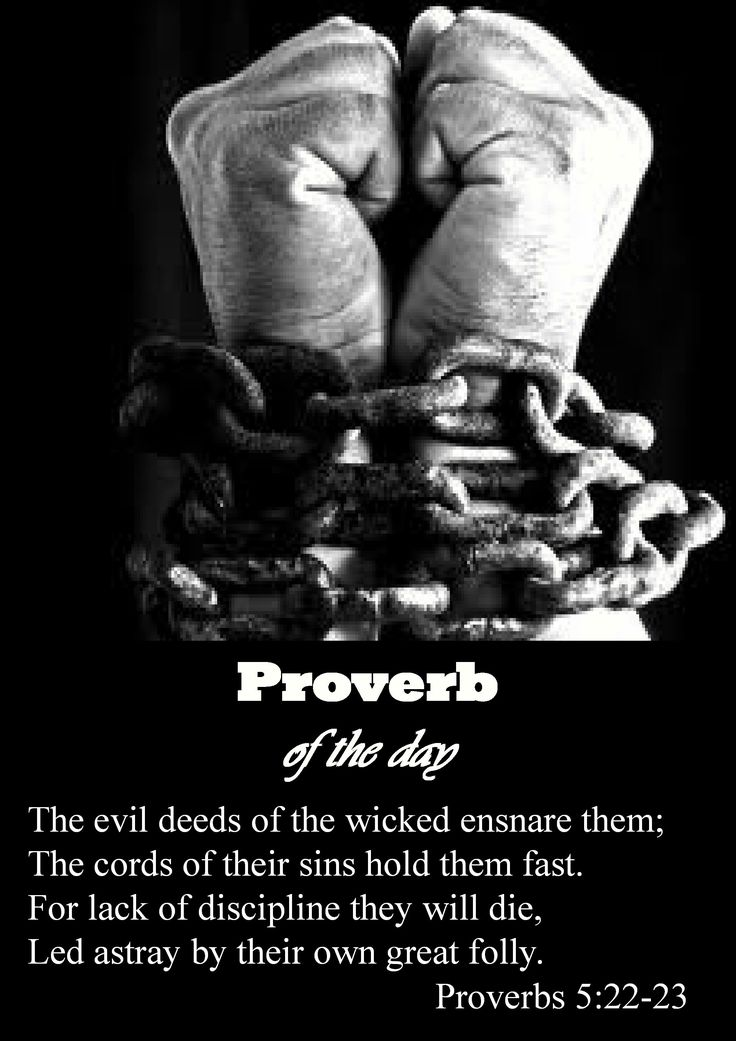 17 Best Images About Proverb Of The Day On Pinterest