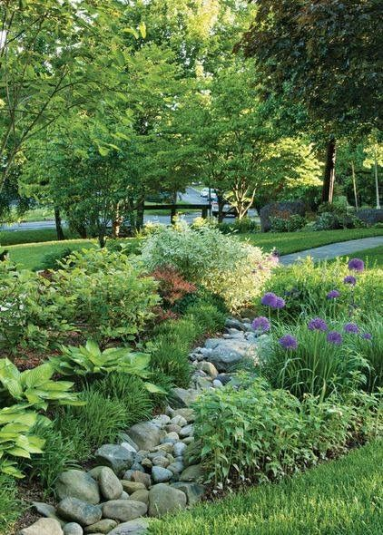 Example of what we'd like our front and side rain garden to look like when finished. Layering and variety of plants.
