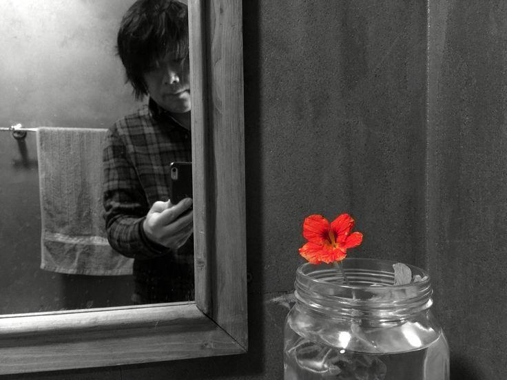 누군가 꽂아 둔 꽃_selfie, 삼송동_썸.   #삼송동_#썸_에서_#셀카를_찍다