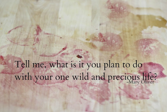 mary oliver: Beets, Plan, Truth, Wise Thoughts, Inspirational Quotes, Mary Oliver, Precious Life