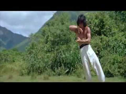 Jackie Chan - Drunken Master - The 8 Drunken Gods Style