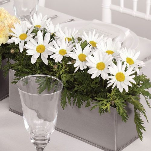 Pretty Daisy Centerpiece - This is from a florist, but would also make a good DIY project.