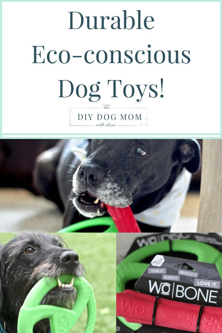 Durable Dog Toys, eco conscious dog toys dog chew toys