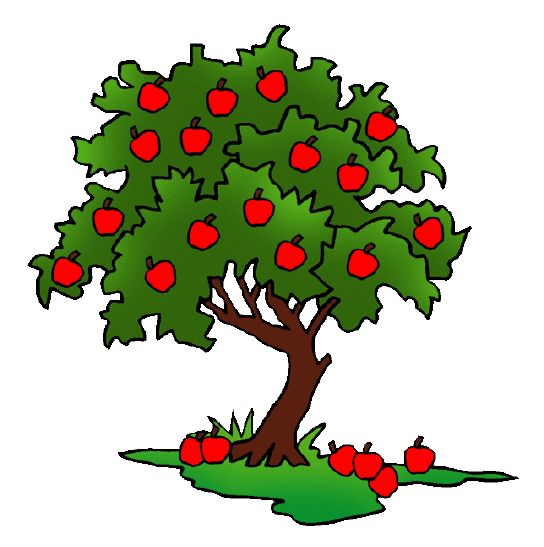 Free Biology Clip Art By Phillip Martin Apple Tree
