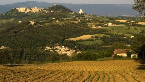 Lonely Planet provides a great description and stunning photos of Umbria - Santa Maria della Consolazione, Umbria