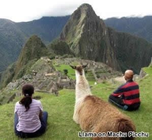 Inca Trail... would love to visit some day