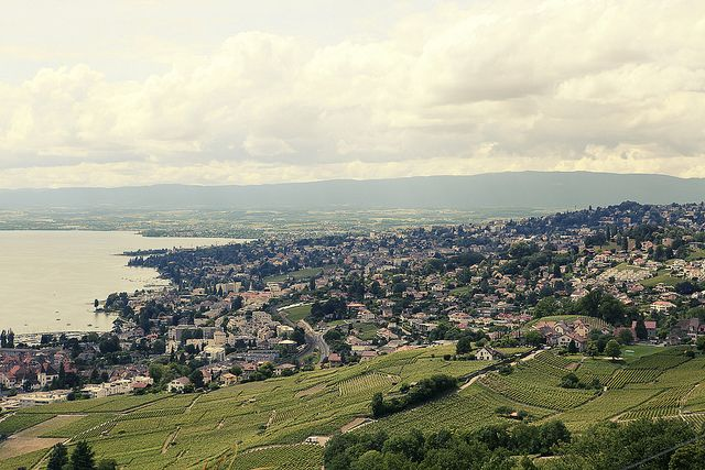 Vineyards over Lausanne | Flickr - Photo Sharing!