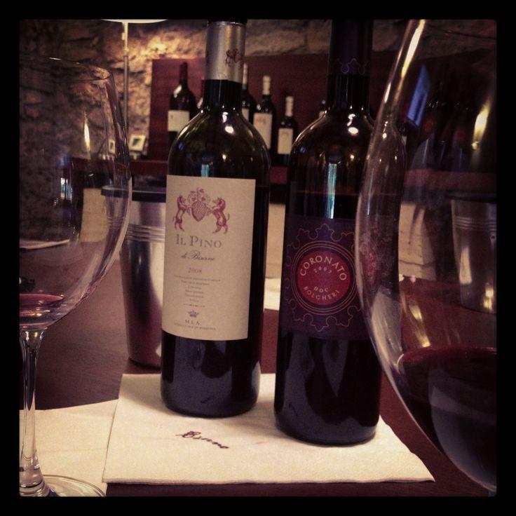 Winetasting Antinori, Bibbona