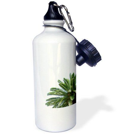 3dRose Palm tree on white sky - green leaves Mediterranean Tropical abstract, Sports Water Bottle, 21oz