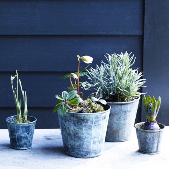 Brent Verdigris Plant Pot