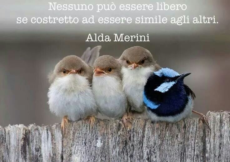 .Alda Merini