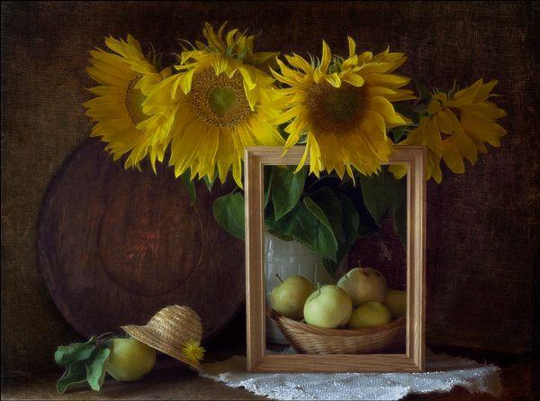 GIFS HERMOSOS: flores encontrads en la web