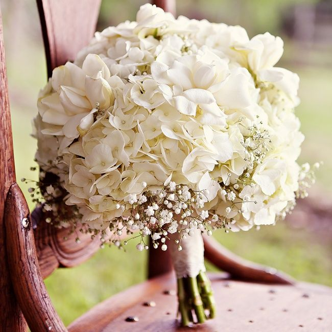 White hydrangea bouquet   Bray Danielle Photography   Bouquet: Carter's Supermarket