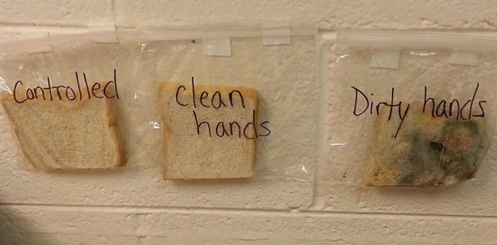 Don't care to wash your hands before eating a meal? Sometimes, we often are in a hurry or are too hungry that we often don't think of taking those extra few minutes to wash off, but after seeing this, you might want toreconsider. This picture, posted by a teacher, Courtney Lee Simpson, on Facebook shows ...