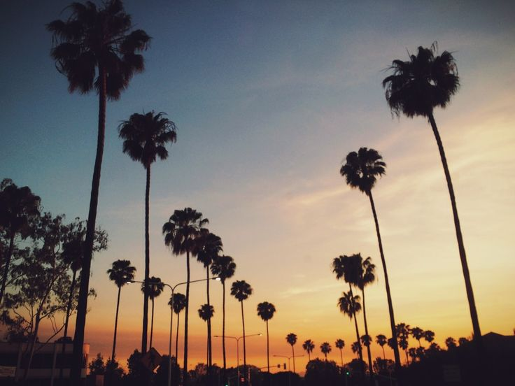 The Ultimate Los Angeles Guide: 7 Bloggers Map Out Their LA...