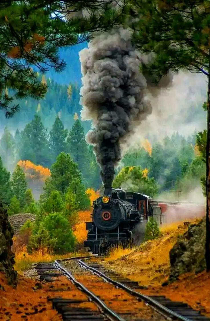 Pin by Gary Novak on Awesome Train, Train