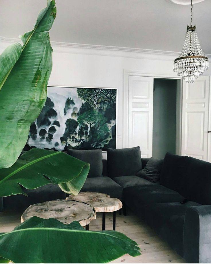 Dark green velvet sofa, tree section tables & banana palm | @styleminimalism