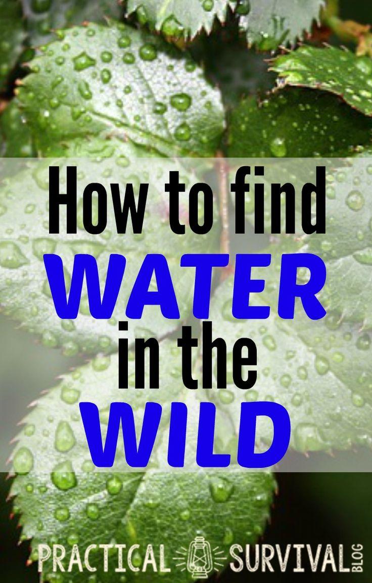 Wasser in der Wildnis finden? Das ist gar nicht so einfach
