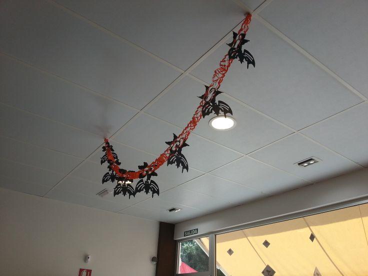 Hasta murciélagos caen de nuestro techo