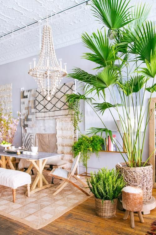 Mix In Tropical Style. Tropical InteriorTropical HomesTropical ...