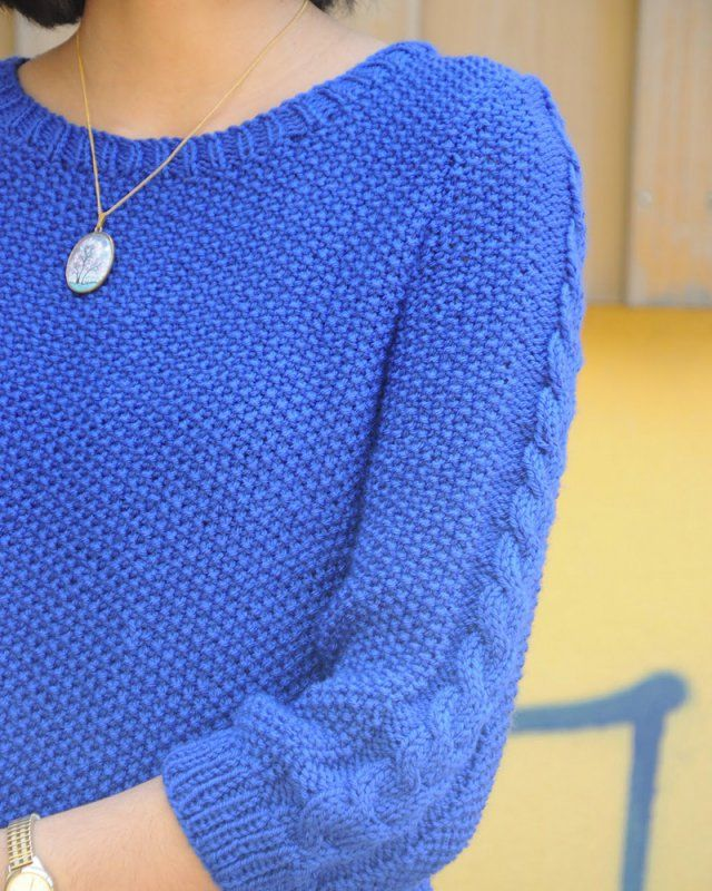 Pull bleuet