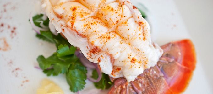 Australian Cold Water Lobster Tail (http://www.peteseafoodclub.com/blog/seafood-online/feeling-fancy/) #Australian #Cold #Water #Lobster #Tail (http://www.peteseafoodclub.com) #Pete #Seafood #Petes #Sea #Food #Shop #Delicious #Fish #Shellfish #Online #Healthy #Health #Blog
