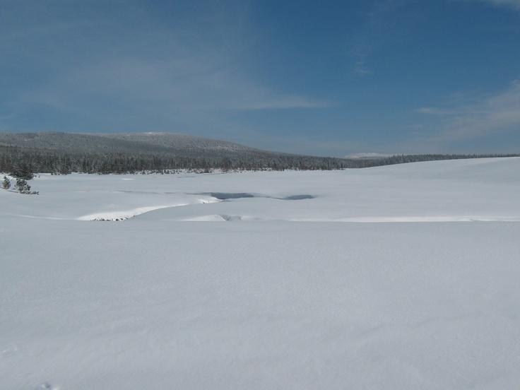 Winter. Izery Mountain. Poland.