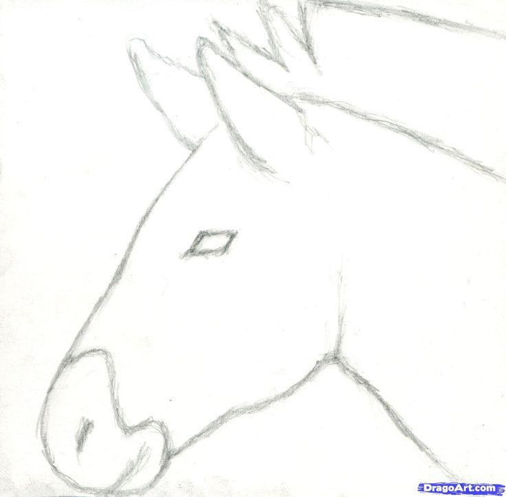 how to draw a zebra, draw a realistic zebra step 3