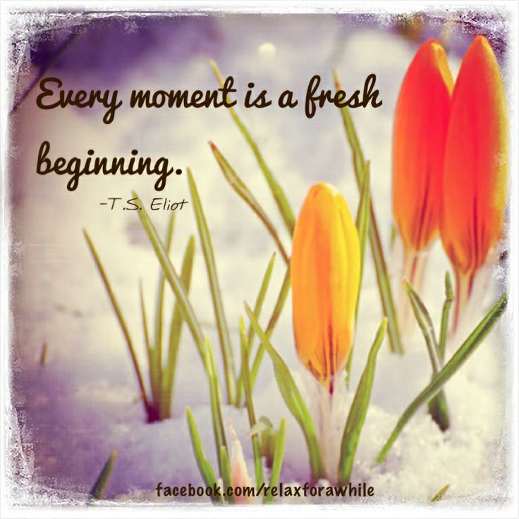 Every moment is a fresh beginning.  www.facebook/relaxforawhile