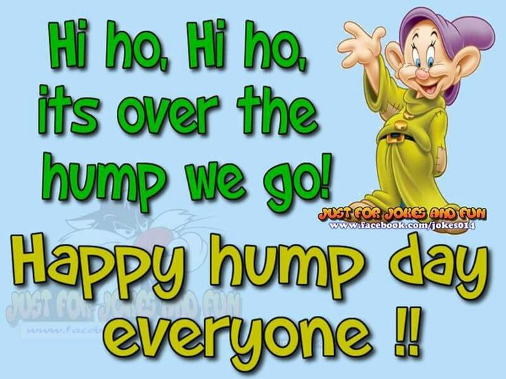 Happy Hump Day Everyone