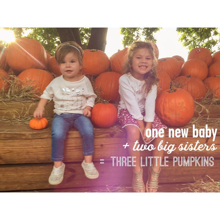 Fall third baby pumpkin announcement