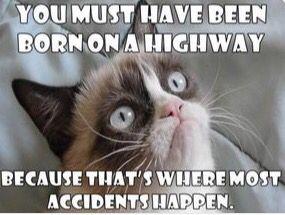 Hahahah oh......grumpy cat