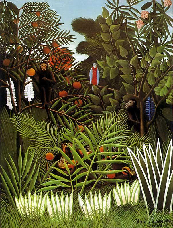 Rain Forest   Amazon lapbook/unit