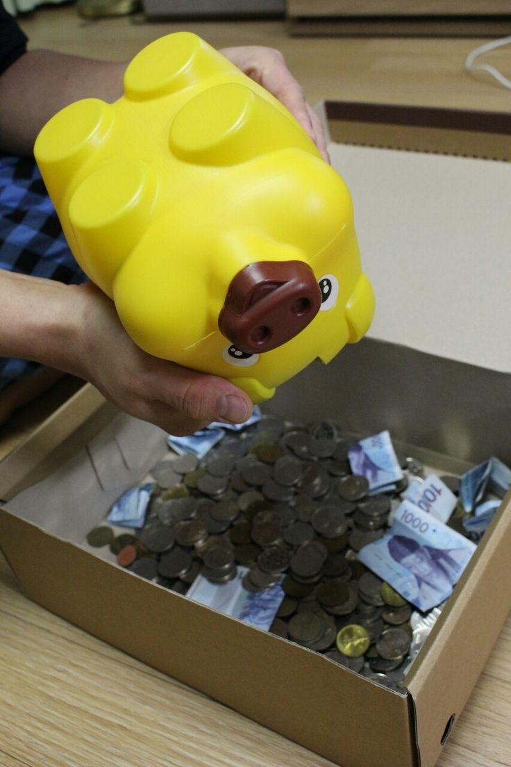 트래블러루앙프라방의 돼지 잡는날 【Piggy bank】 #일상 #저금통 #트래블러루앙프라방 처음엔 500원으로 가득 채워 여행 간다고 루앙남타랑 동전을 모으기 시작했지만 예쁜 돼지 안에는 143,290원이 모여 있었습니다. 좀 더 큰 돼지를 데려와야겠어요~^^★ #TravelPhotographer #Travel #Photo #Food #Restaurant...