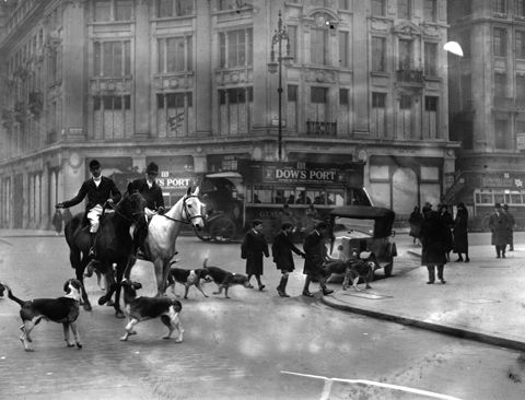 Fox hunting on Oxford Street, 1926  From Getty Images' Hulton Archive