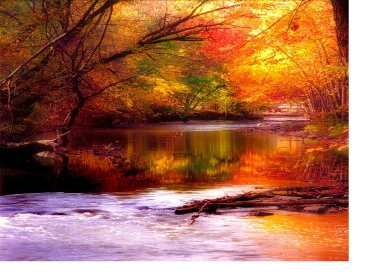 Fall wallpaper autumn and rivers on pinterest for Desktop sfondi autunno