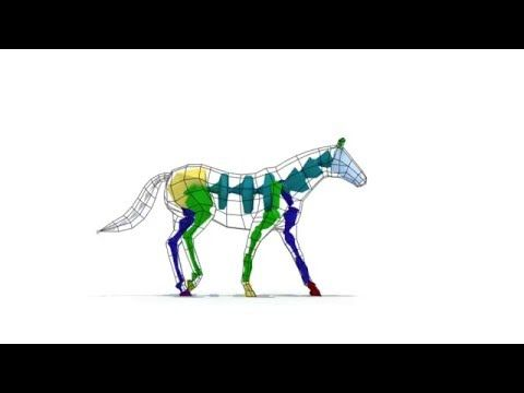 Horse Walk Cycle 3D Animation (3dsmax,rigging biped) - YouTube