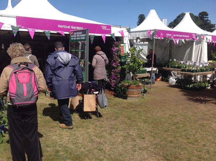 Eco Gardens Bondi, exhibiting again at the Sydney Flower & Garden Show 2014.
