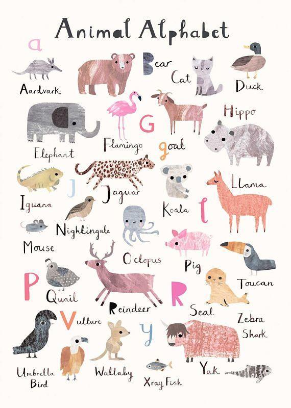 Animal Alphabet Print Nursery