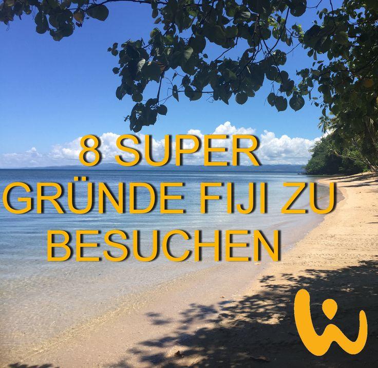 Ob Hotel mit Tauchbasis oder Tauchsafari - bei uns findest du deinen perfekten Urlaub.   #oceanlover #born2dive #meer #wirodive #robertwilpernig #touchedbynature #sommer #sonne #fiji