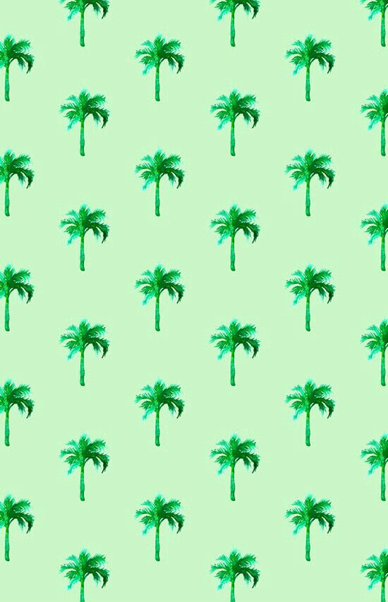 Palms galore!