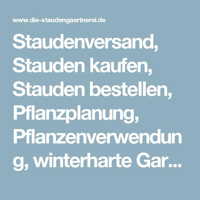 Die 25+ Besten Ideen Zu Winterharte Pflanzen Auf Pinterest ... Winterharte Balkonpflanzen Pflanzarten Und Pflege Tipps