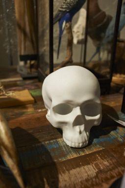 3D geprinte schedel #TMOtrendevent