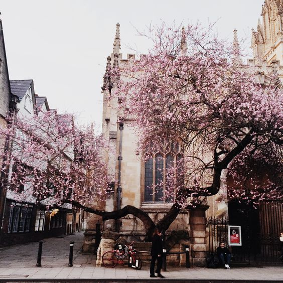 Oxford England #beautifulplaces #places #amazingplaces #awesomeplaces #travel #placespictures #placesphotos #incredibleplaces