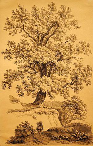 Strom se ženou nesoucí nůši-Antonín Mánes