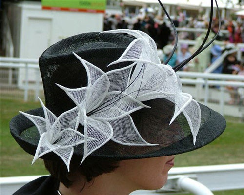 Royal Ascot 2004 - Hats and fascinators (photo by Susan Drerup from The Essential Hat): Fascinators Photo