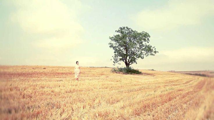 Melis Danişmend - Gölgemde Dinlenmeye Gel