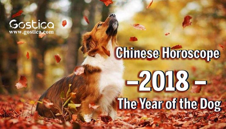According to the Chinese Zodiac,2018 is the year of the Dog and its characteristic word is ACTION! Chinese New Year in 2018 is on Friday, the 16th of February and ends on February 4, 2019.
