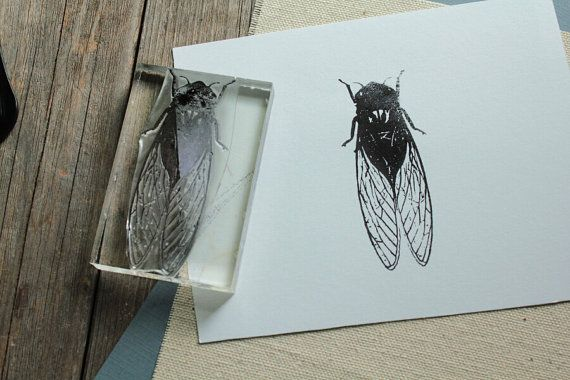 Cicada Rubber Stamp  2x3 Inches by StandardStampCo on Etsy, $15.00