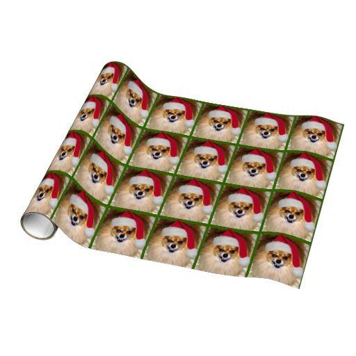 Wrapping Paper   Pomeranian Santa Dog green